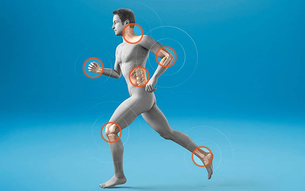 Изображение - Анимал флекс для суставов отзывы sostav-i-printsip-deystviya-1024x642